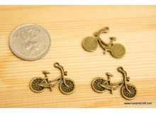 *P164* Charm: Bicycle
