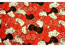 *FV213-* Canvas: Red Hello Kitty