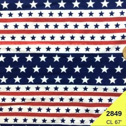 **902849* Lycra Knit: America Stripes with Star
