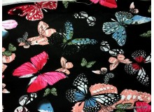 *800309* Canvas: Colorful Butterfly On Black (140cm)